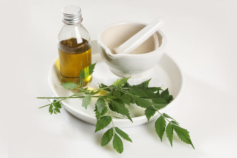 Herbes Neem d'Ayurvedic avec de l'huile photos libres de droits