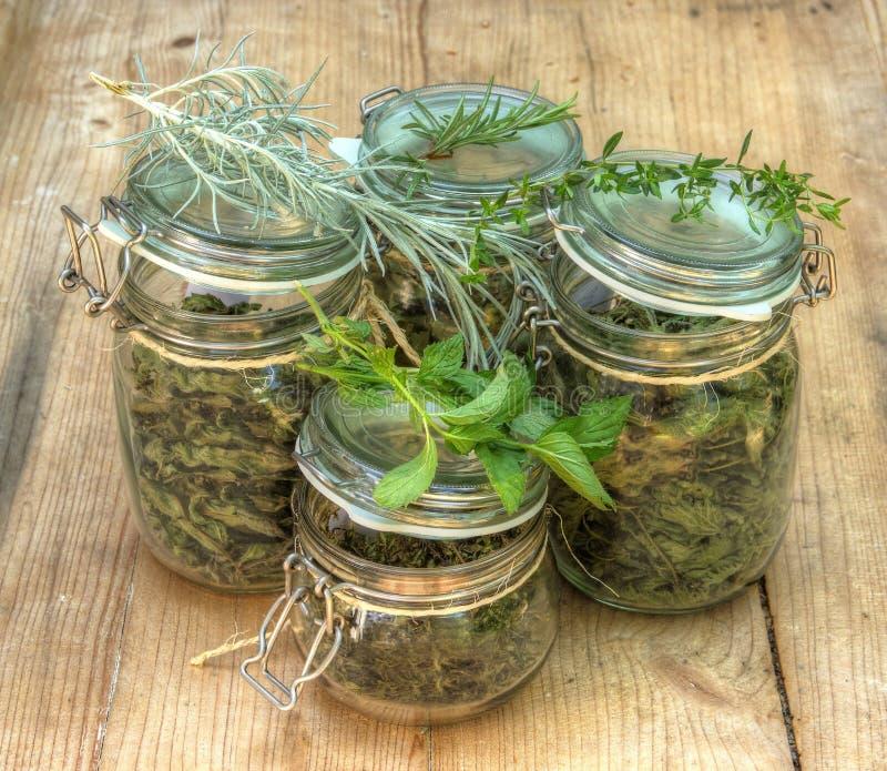 Herbes sèches dans des bouteilles en verre photo libre de droits