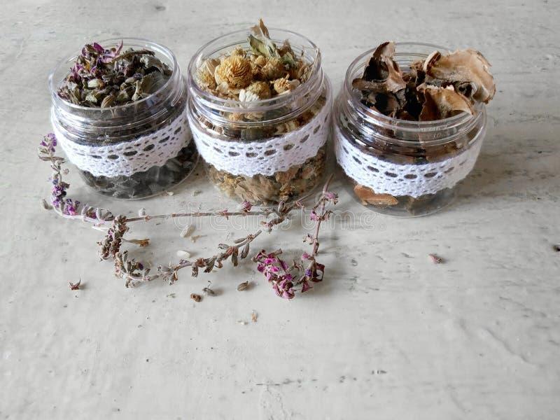 herbes sèches médicinales photos libres de droits