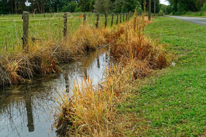 Herbicidegebruik op een drainagesloot die afvoerkanalen in een estuarium, Nieuw Zeeland stock afbeeldingen