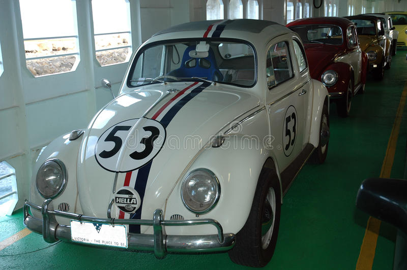 Herbie. fotos de stock