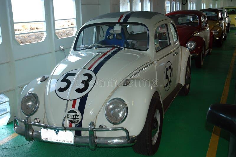 Herbie. zdjęcia stock