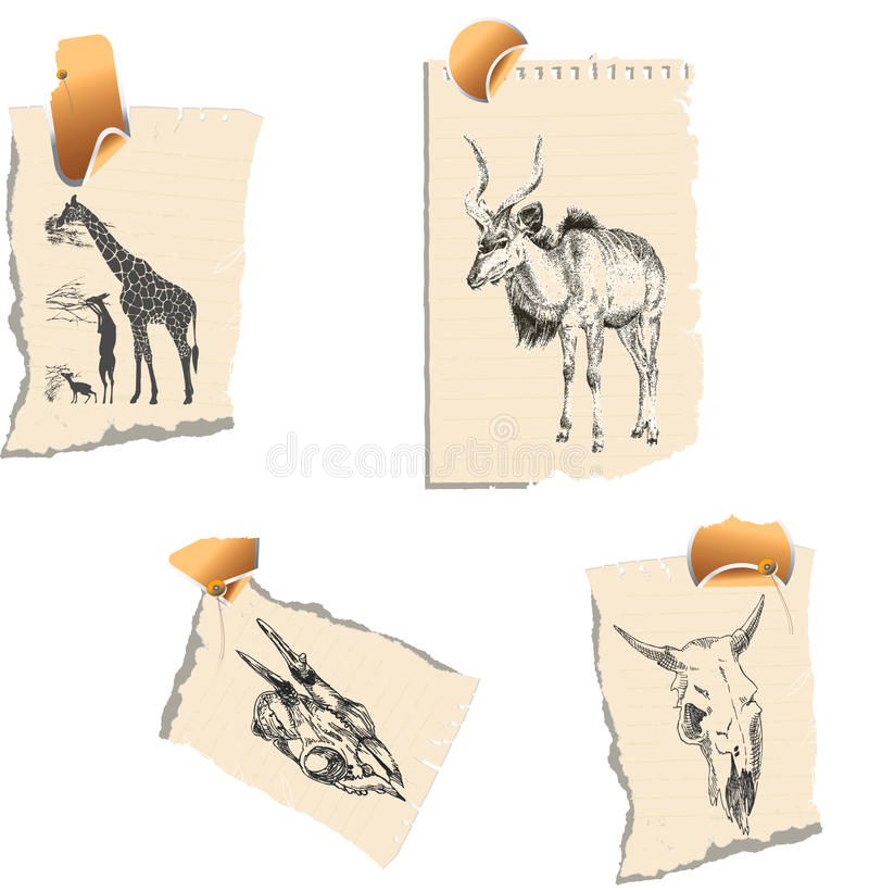Herbivores. A series of detailed drawings on pieces of paper stock illustration