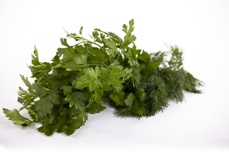 Herbs #1 royalty free stock photo