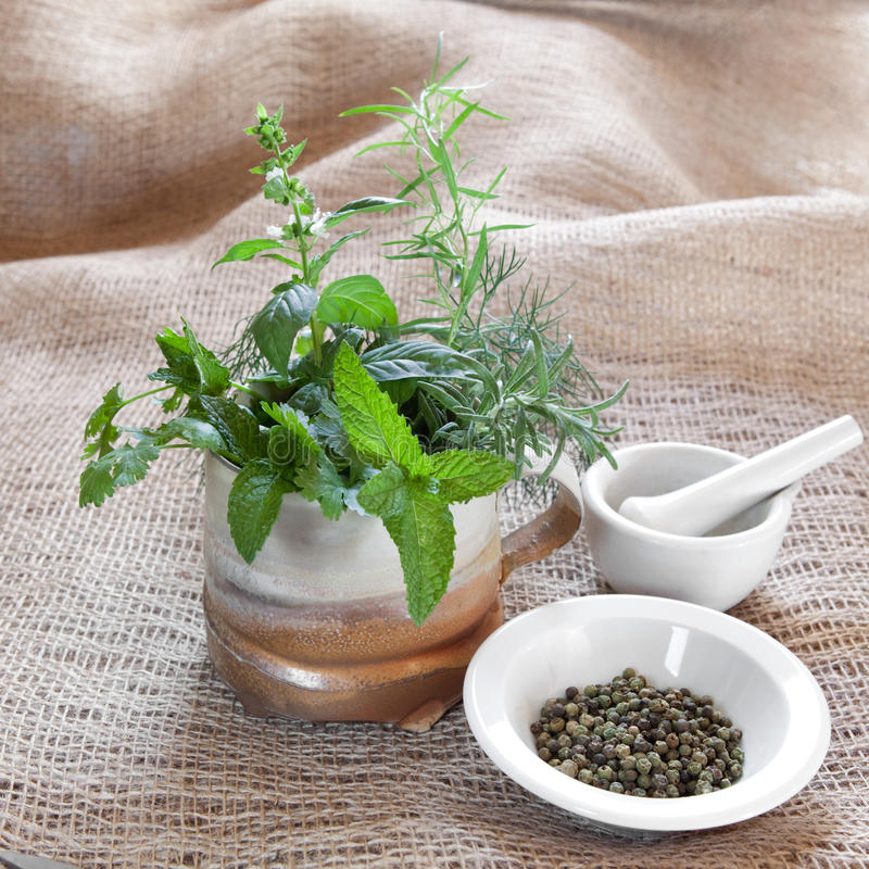 Download Herbs stock image. Image of idyllic, flavoring, food - 15009981