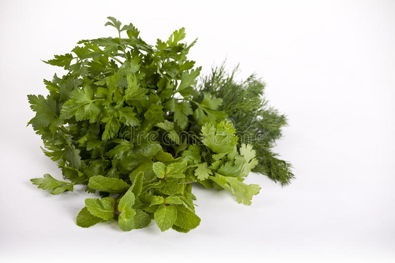 Herbs #2 royalty free stock images