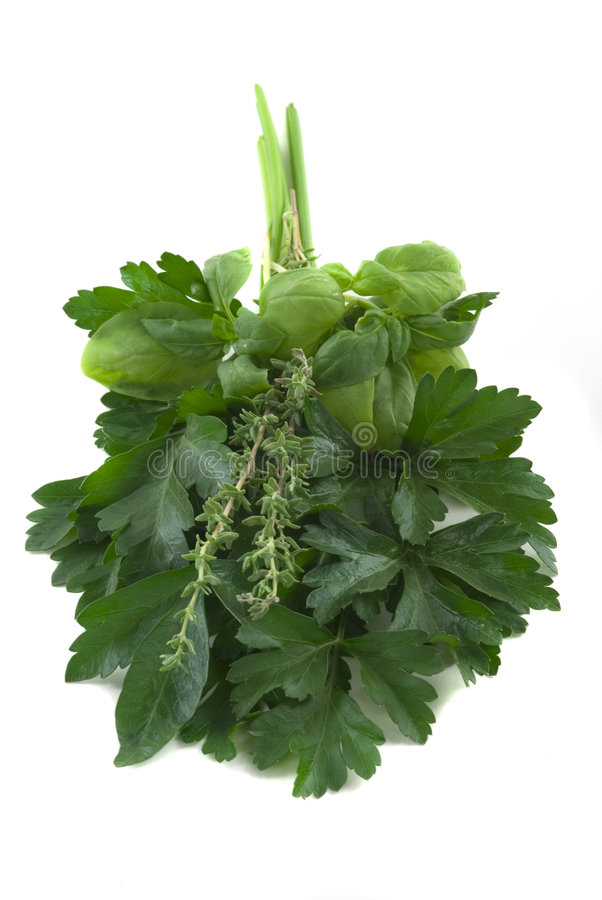 Herbs stock photography