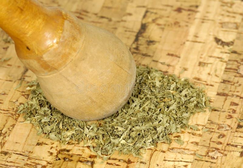 Download Herbs stock photo. Image of pestle, prepare, herbal, kitchen - 963828