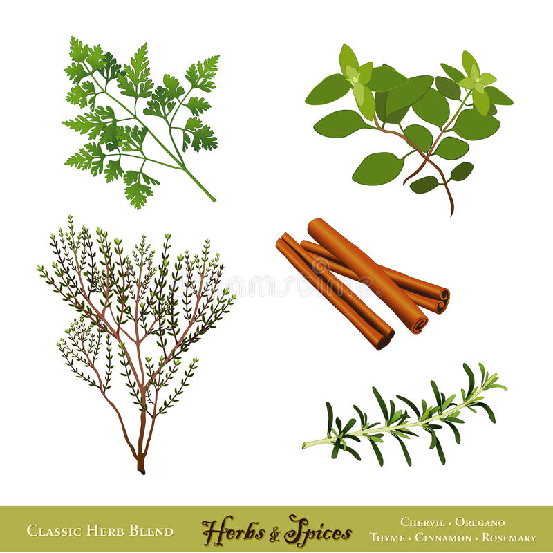 Free Herbs And Spices Stock Image - 21257431