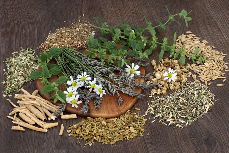 Herbs for Anxiety and Sleeping Disorders stock photos