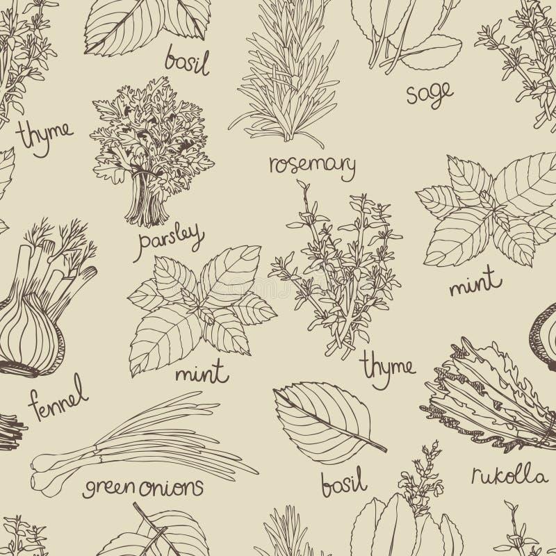 Herbs background stock illustration