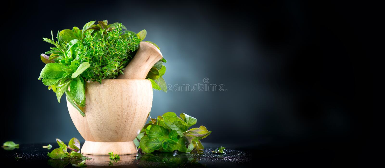 Herbs. Bunch of Fresh green organic aromatic herb leaves in wooden mortar with pestle over black background royalty free stock photo