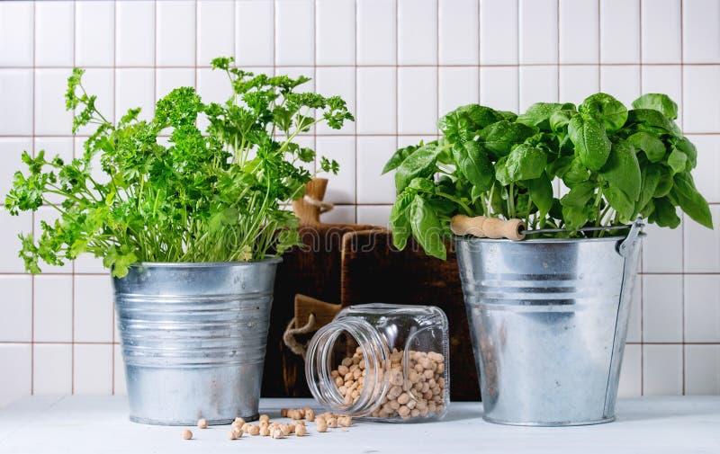 Herbs and checkpeas stock photos