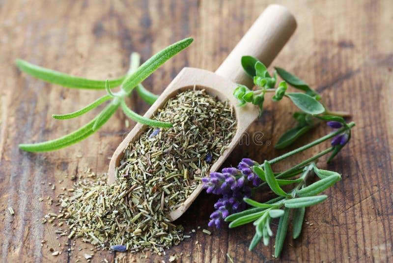 Herbs de Provence foto de stock royalty free