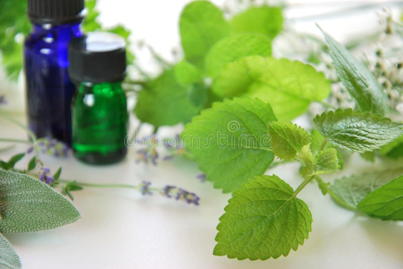 Herbs and essential oils royalty free stock image