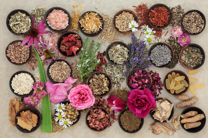 Herbs and Flowers for Skin Disorders. Herb and flower selection used in herbal medicine to heal skin disorders such as psoriasis and eczema on hemp paper stock images