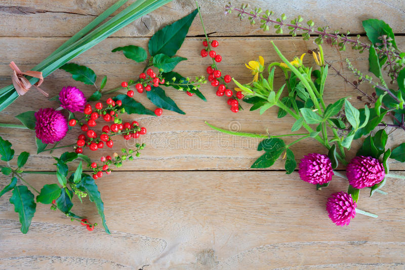 Herbs and flowers. On wood background royalty free stock image