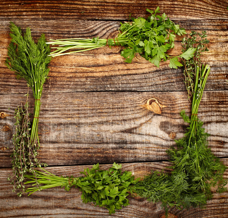 Download Herbs frame stock photo. Image of kitchen, ingredient - 37244782