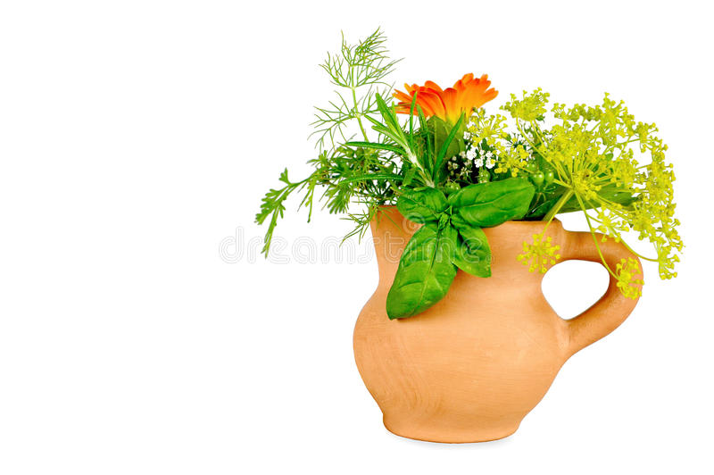 Herbs isolated on white background stock photo