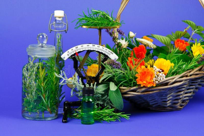 Herbs for medicine royalty free stock photos