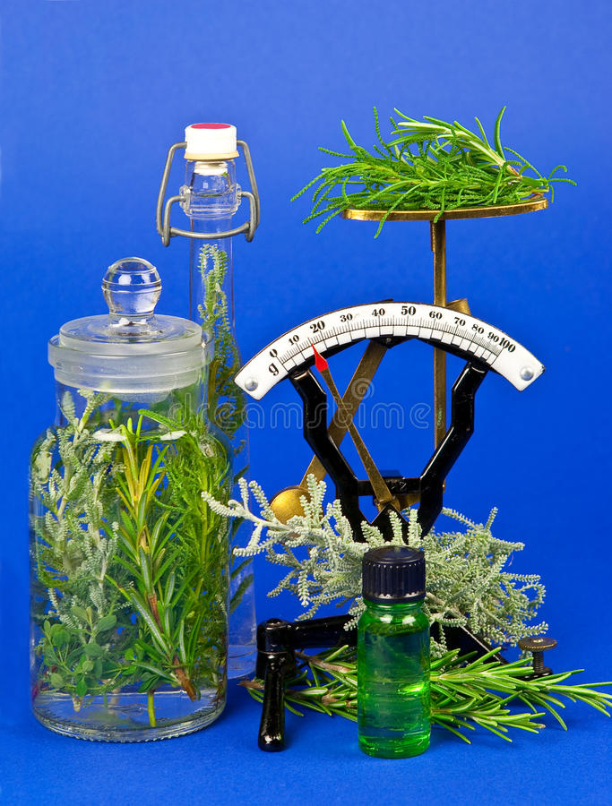 Herbs for medicine or cooking stock images