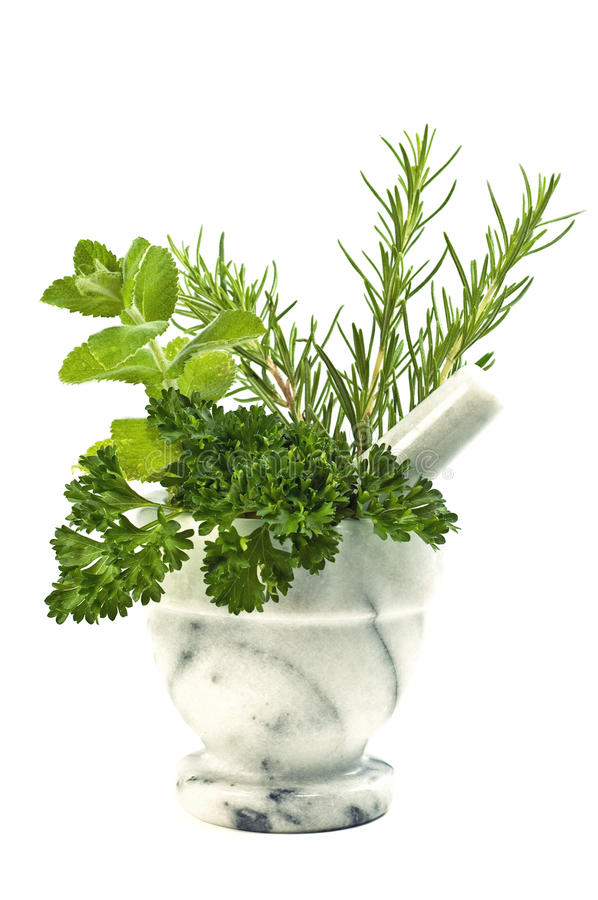 Download Herbs With Mortar And Pestle Stock Image - Image: 15176835