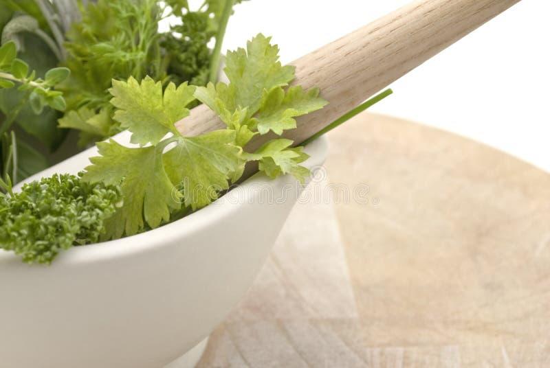 Herbs Mortar And Pestle - Lframe Royalty Free Stock Photo