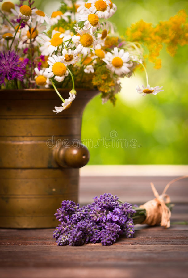 Herbs in the mortar. Mortar with wild flowers and lavender on the table stock photos