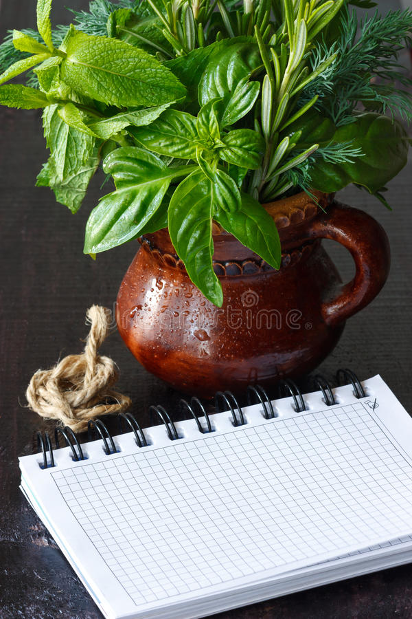 Download Herbs and notebook. stock photo. Image of bright, fresh - 25643246