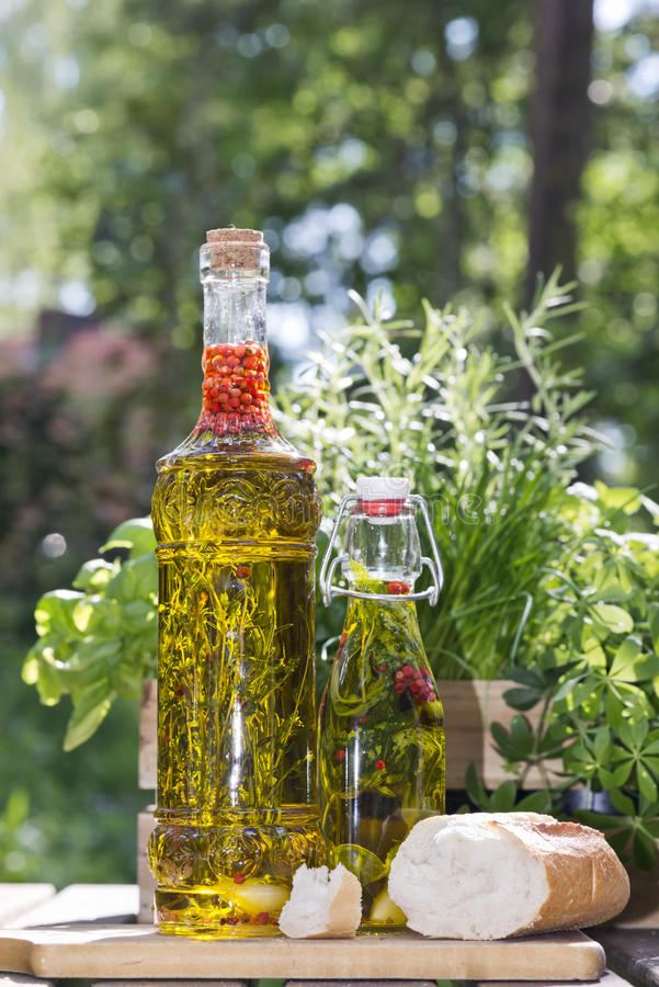 Herbs in olive oil bottles stock images