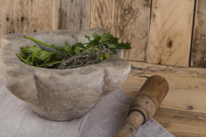Herbs and pestle and mortar royalty free stock photos