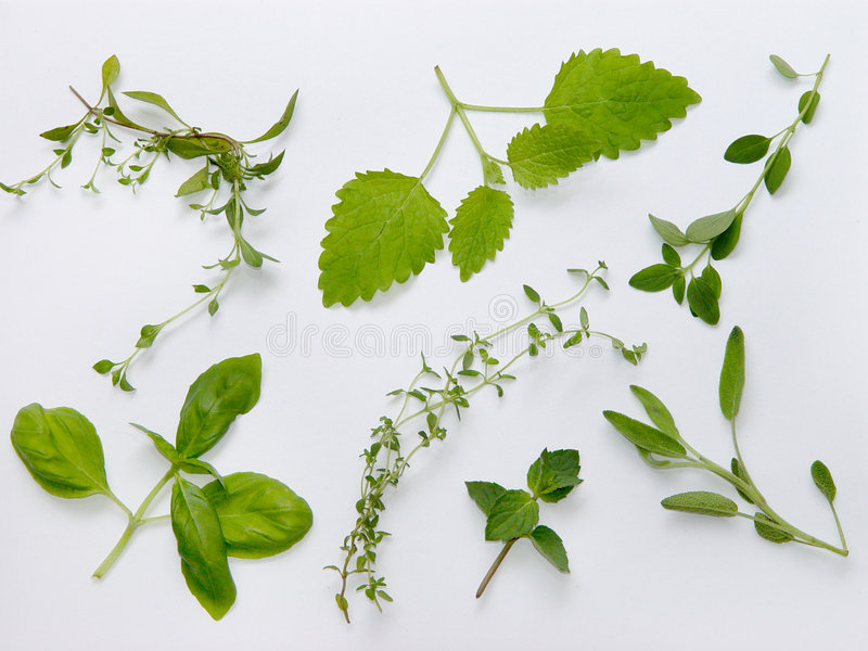 Download Herbs Plateau Stock Images - Image: 391874