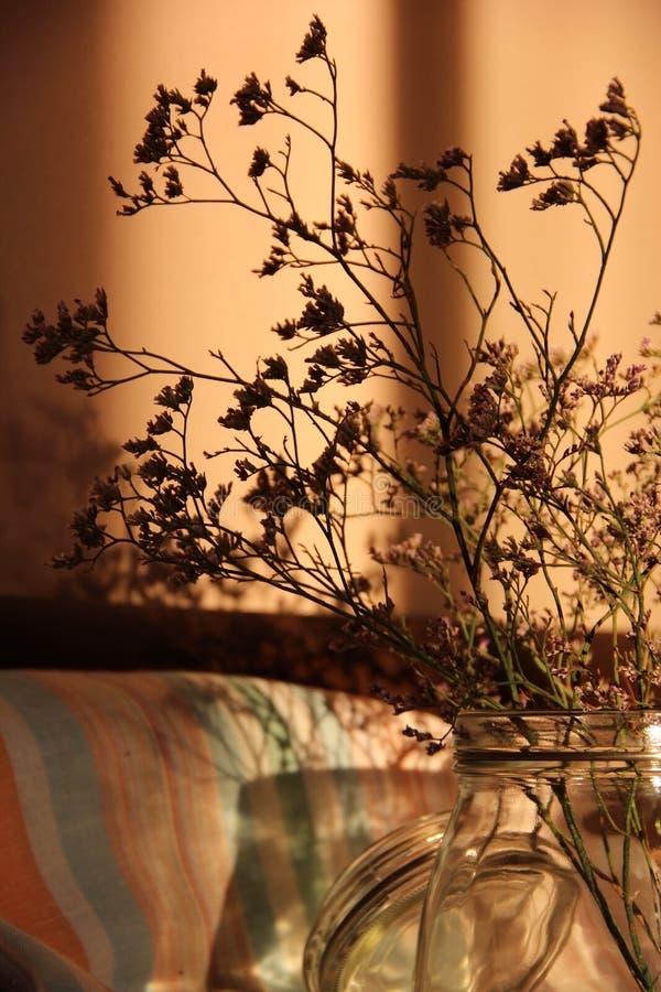 Download Herbs2 secco fotografia stock. Immagine di vaso, tracery - 56880610