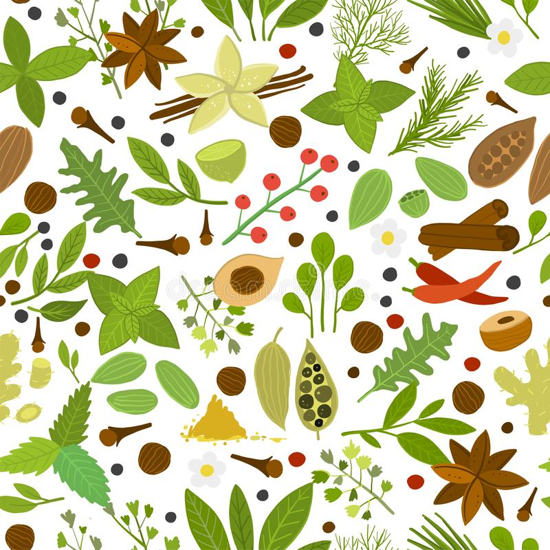 Herbs and spices background, seamless pattern for your design. Vector illustration vector illustration