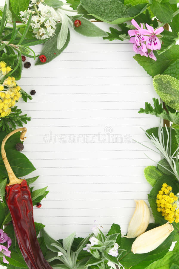 Herbs and spices frame stock image. Image of herbs, ingredients ...