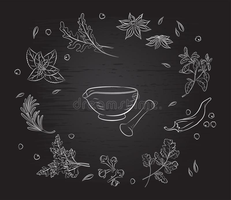 Herbs and spices and mortar. Background black Board stock illustration