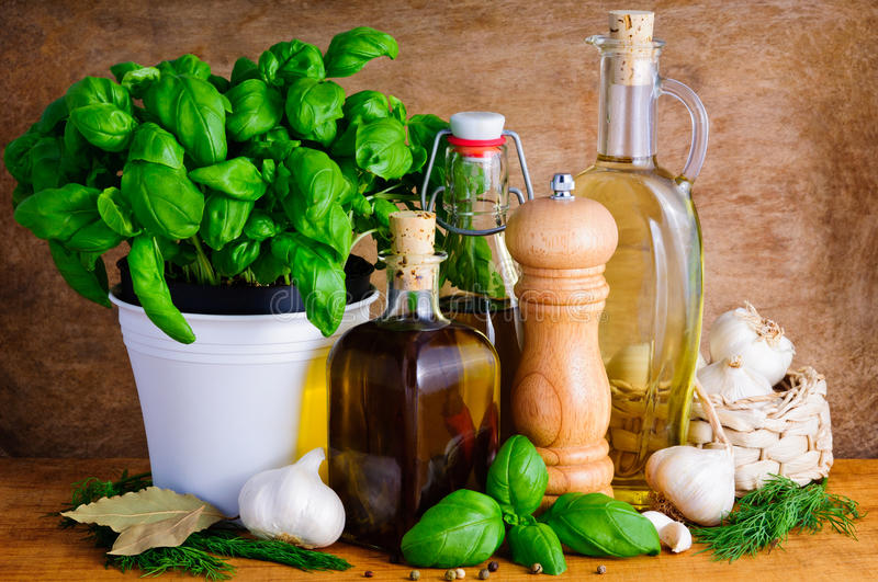 Herbs, spices and olive oil royalty free stock photos