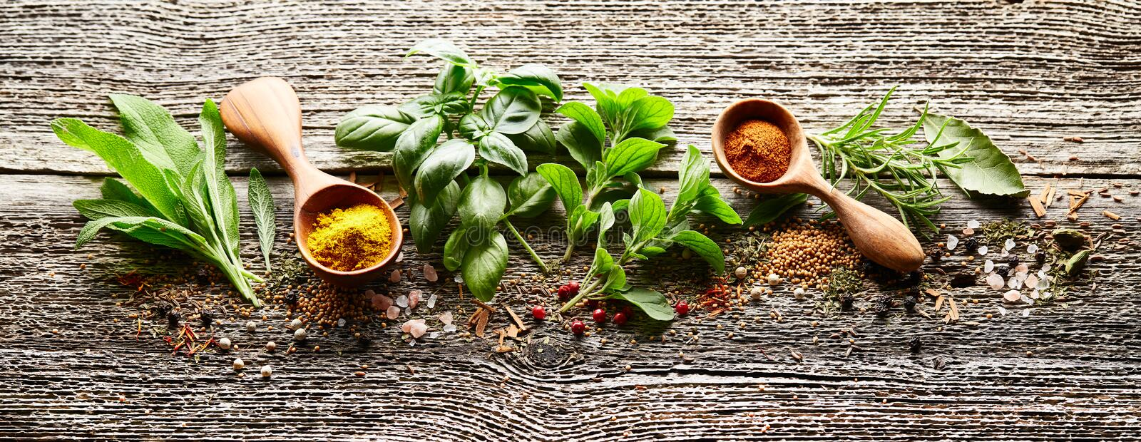 Herbs and spices on wooden board royalty free stock images