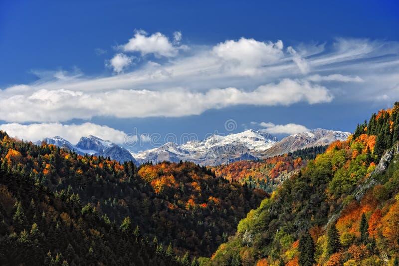 Herbst auf dem Berg stockfotos