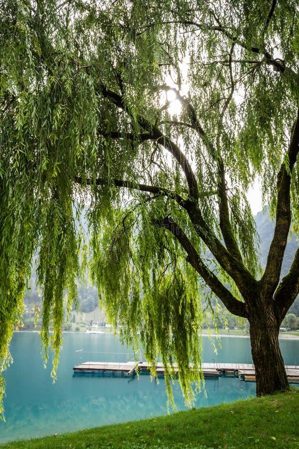 Herbst auf dem See Ledro stockfotografie