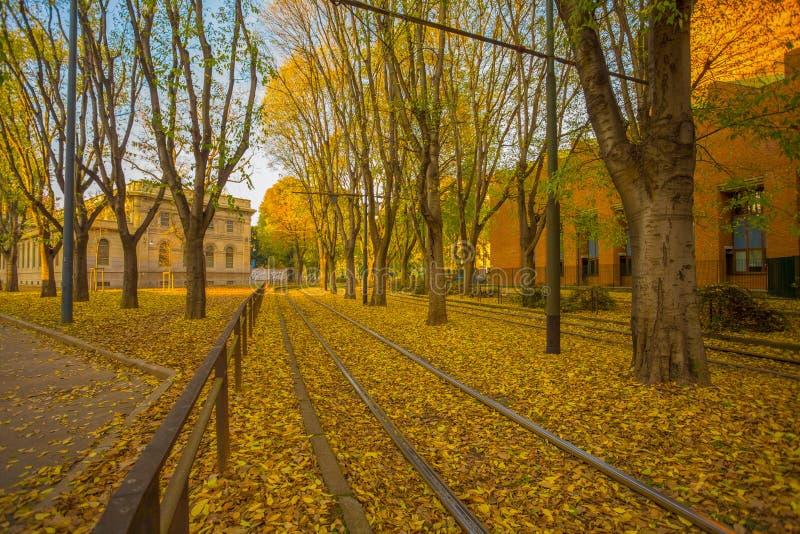 Herbst auf den Straßen von Mailand, Italien stockfoto