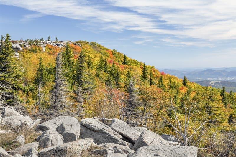 Herbst auf der Allegheny-Front stockfotos