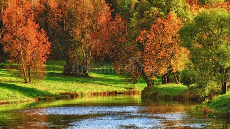 Herbst auf einem See lizenzfreie stockfotografie