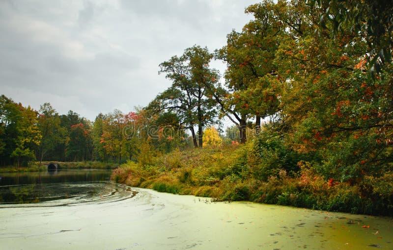 Herbst auf einem See lizenzfreies stockfoto
