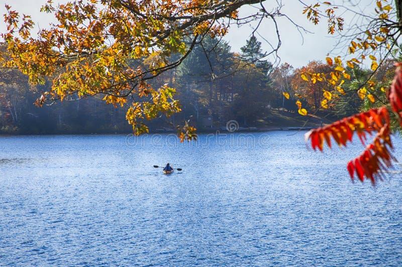 Herbst auf Muskoka Seen, Kanada Kanufahrer, der einen Ca schaufelt stockfoto