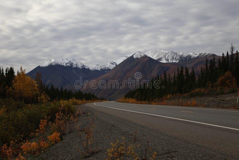 Herbst auf Parks Hwy nahe Nationalpark Denali, Alaska stockfoto