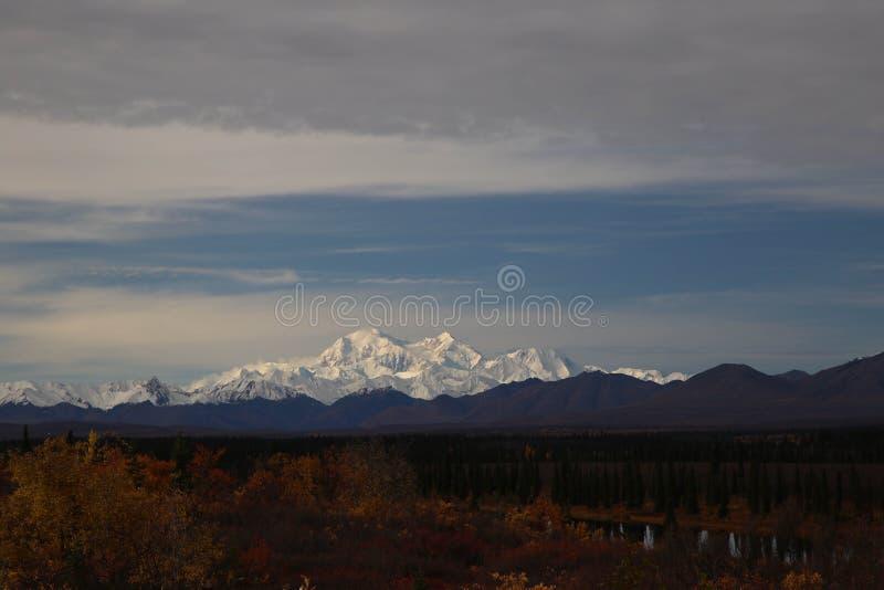 Herbst auf Parks Hwy nahe Nationalpark Denali, Alaska stockfotos