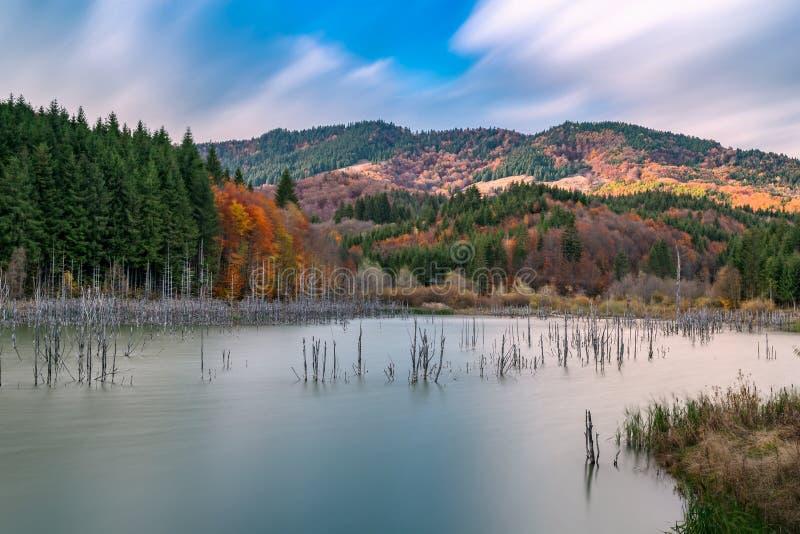 Herbst auf See Cuejdel in Rumänien stockfotos