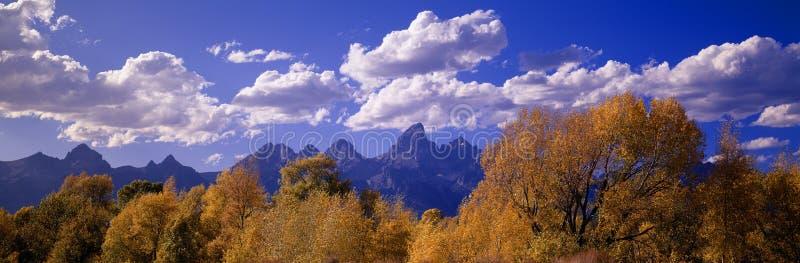 Herbst bei großartigem Tetons lizenzfreies stockfoto