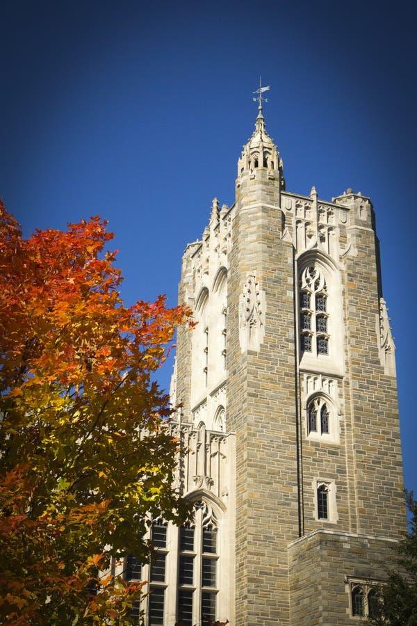 Herbst bei Princeton lizenzfreie stockbilder